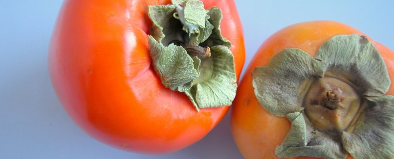 Persimmon: Heart Food for the Gods