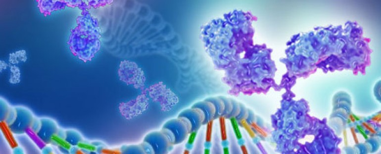 What Should You Know About Recombinant Proteins